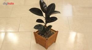 گلدان چوبی وینگ وود مدل روستیک WFP01