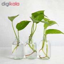 گلدان مدل ویال 1G1-2 بسته 3 عددی